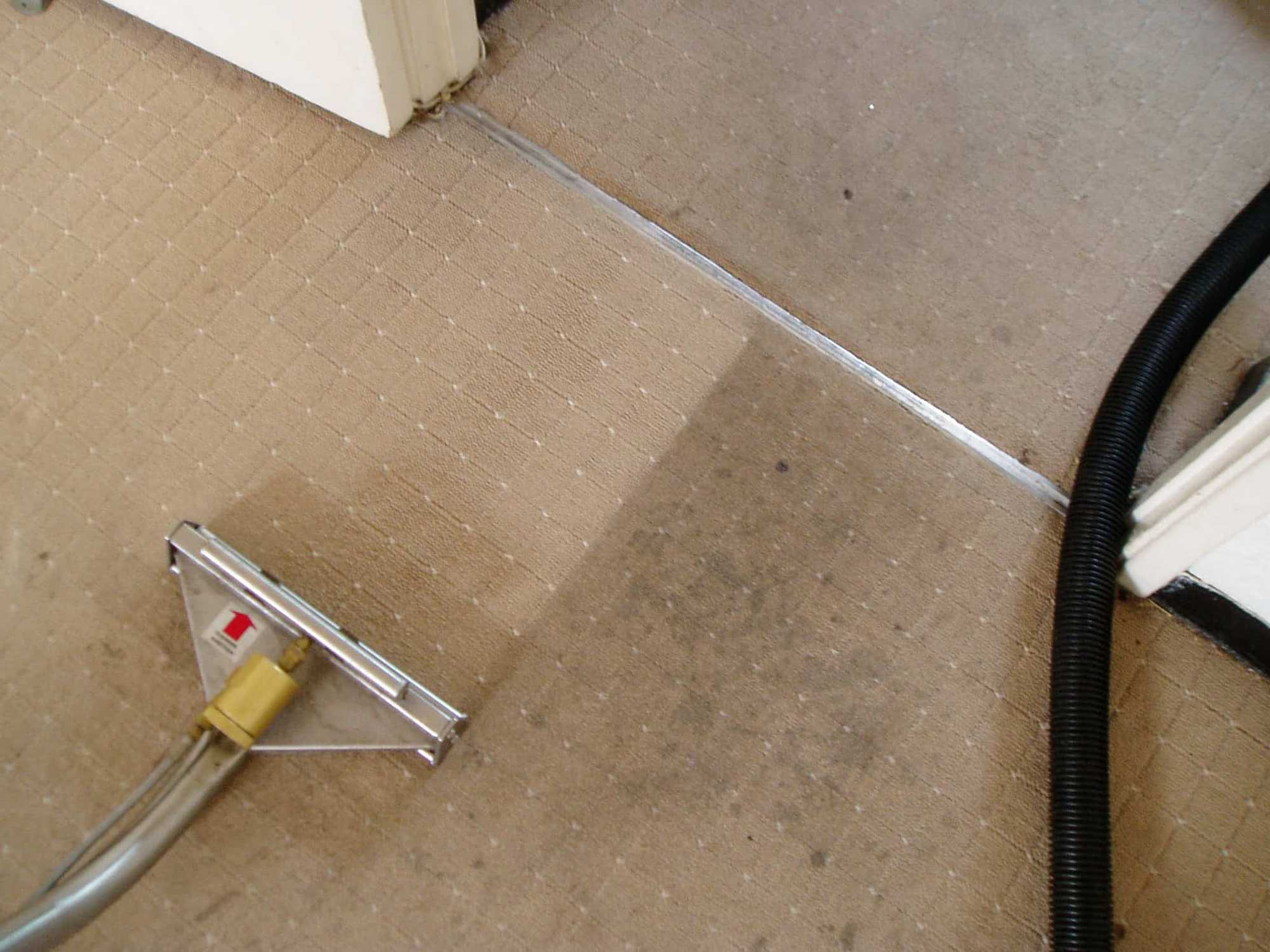 carpet cleaning in brooklyn