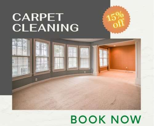 1carpet cleaning offers