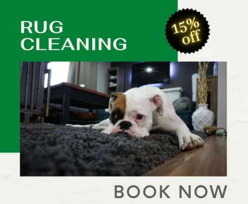2carpet cleaning offers