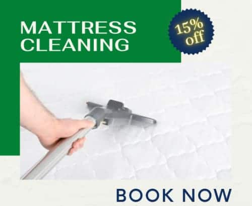 4carpet cleaning offers