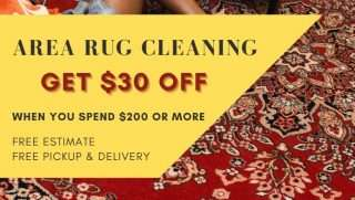 1carpet cleaning specials