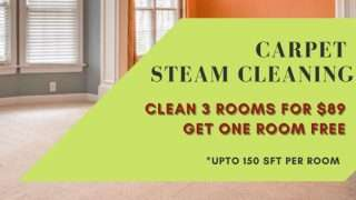 2carpet cleaning specials