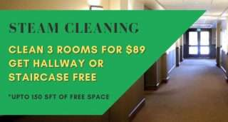 3carpet cleaning specials
